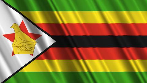 ZimbabweFlagLoop01 Stock Video Footage