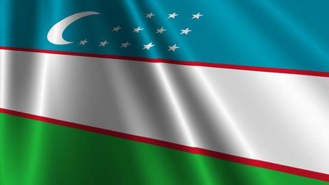 UzbekistanFlagLoop03 Stock Video Footage