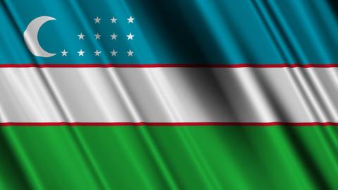 UzbekistanFlagLoop01 Stock Video Footage