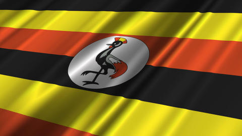 UgandaFlagLoop02 Stock Video Footage
