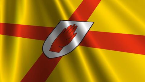 Ulster9ProvinceNorthernIrelandFlagLoop03 Stock Video Footage
