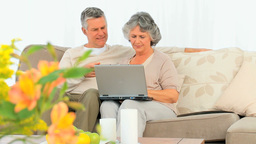 Mature couple working on their laptop Stock Video Footage