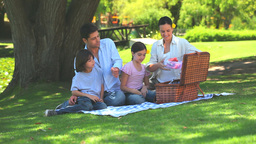 Family opening picnic basket Footage