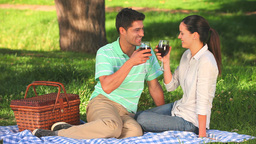 Cute couple drinking red wine Stock Video Footage