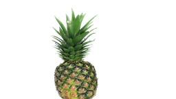 Pineapple rotating Footage