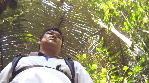 man hiker walking in rain forest Footage