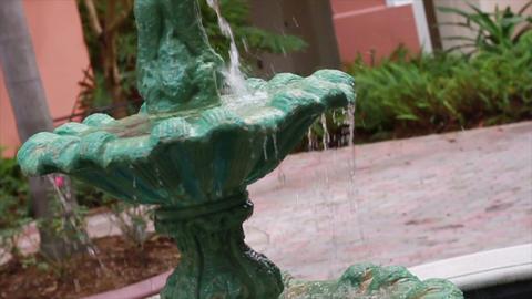 0079 Green Water Fountian Footage