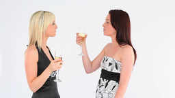 Cheerful welldressed women with champaign Footage
