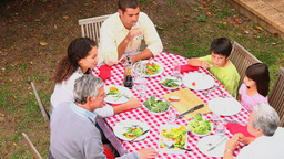 Family At Barbecue From Above stock footage