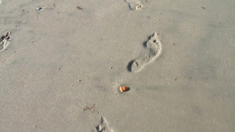 0113 Foot Prints In the Sand Stock Video Footage