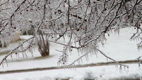 0190 Ice Storm , Icing , Icicle Footage