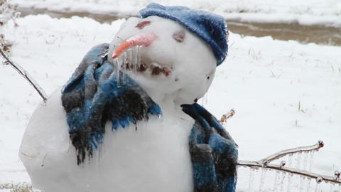 0191 Snow Man , Ice Storm , Icing , Icicle Footage