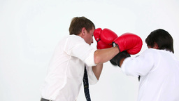 Business people boxing Stock Video Footage