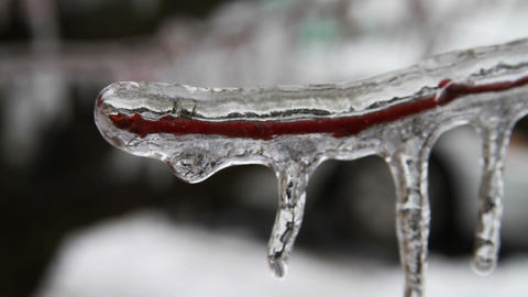 0215 Ice Storm , Icing , Icicle Stock Video Footage