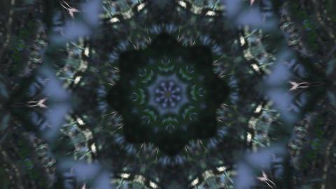 kaleidoscope Forest 3 Animation