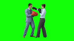 Colleagues boxing in slow motion Footage