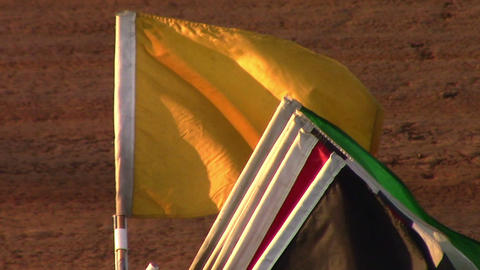 1679 Yellow Car Racing Flag, Slow Motion Live Action