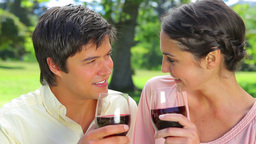 Happy couple clinking their glasses of red wine Stock Video Footage