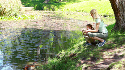 Mother and daughter nourishing ducks Footage
