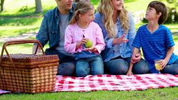 Family eating picnic Footage
