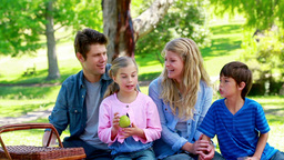 Family eating picnic Stock Video Footage