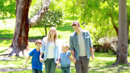 Family walking together Stock Video Footage