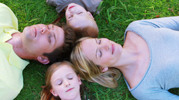 Family lying on the grass Stock Video Footage