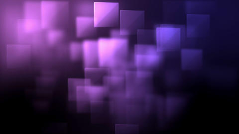 Pink and purple squares appearing Animation