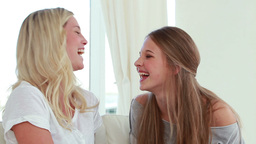 Laughing Friends Talking To Each Other stock footage