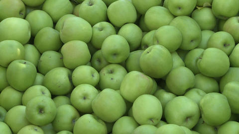 gapples in bin zoom out Footage