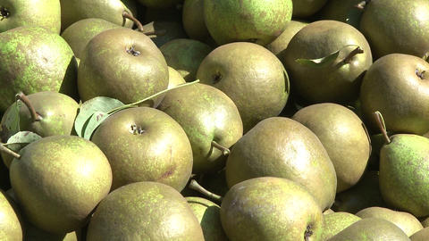 pears in bin close up Stock Video Footage