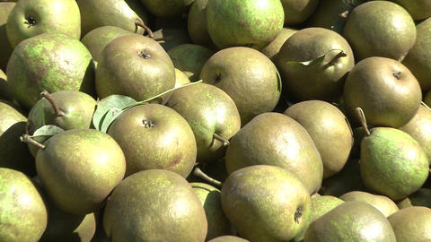 pears in bin close up Footage