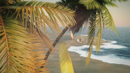 (1233) Coconut Palms Surfboards Beach Chairs Surf Sunset Stock Video Footage