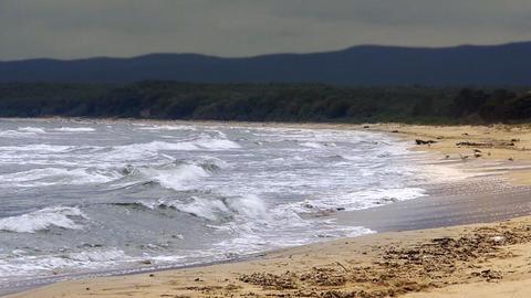 Coastal landscape Stock Video Footage