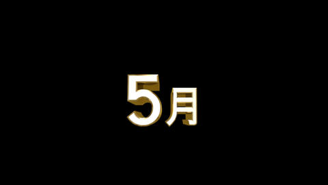 Months 05 J HD Stock Video Footage