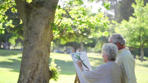 Mature couple painting trees Stock Video Footage