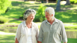 Smiling mature couple walking in front of a lake Stock Video Footage