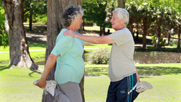 Smiling retired couple doing stretching exercises Footage
