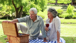 Smiling mature man showing strawberries to his wif Stock Video Footage