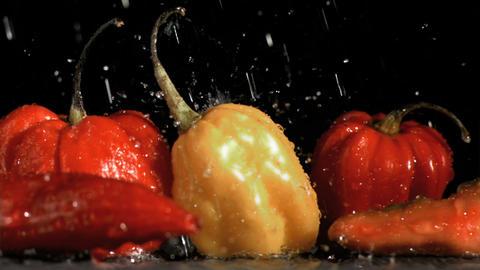 Raindrops falling in super slow motion on vegetabl Footage