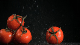 Tomatoes in super slow motion receiving raindrops Stock Video Footage