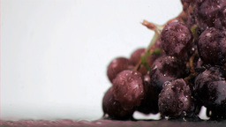 Purple grapes in super slow motion receiving drops Footage