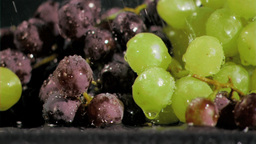 Grapes in super slow motion receiving water Stock Video Footage
