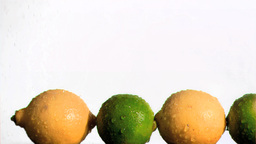 Limes and lemons in super slow motion being wet Footage