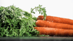 Tasty carrots in super slow motion being soaked Stock Video Footage