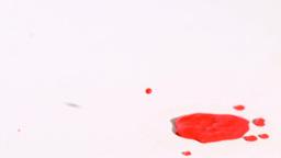 Red drop splashing in super slow motion Stock Video Footage