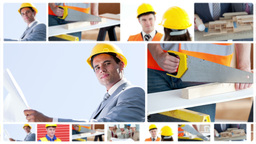 Architects and workers working together Animation