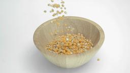 Corn kernels in super slow motion falling in a woo Footage