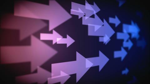 Video of multiple purple arrows Animation