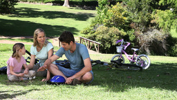 Family discussing while sitting in a park Footage